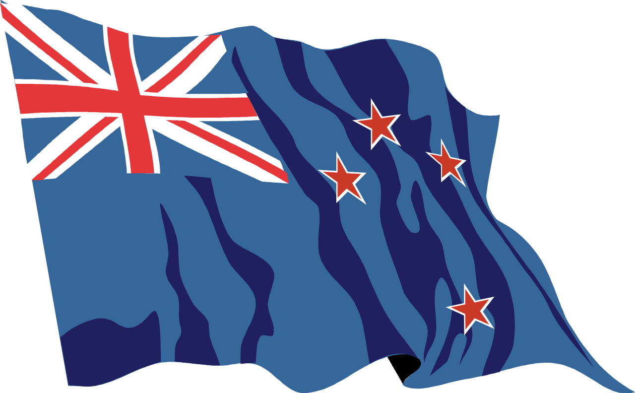 bandeira - Home